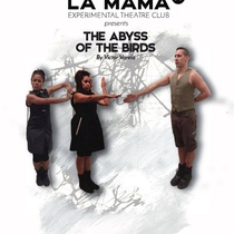 "Poster for the production ""The Abyss of the Birds"""