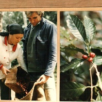 Photographs of a coffee harvest in the mountains taken by actress Ana Olivarez-Levinson in the Escambray